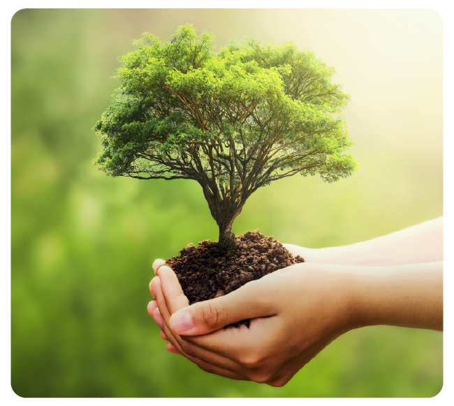 Corporate Social Responsibility and the Shifting to Green Initiative at CFR Freight